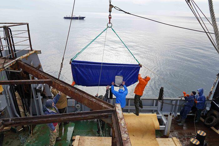 Правительство хочет отобрать берега у дальневосточных рыбаков