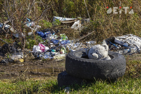 Приморская тайга тонет в мусоре