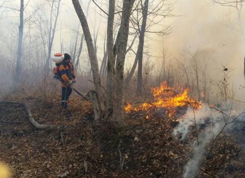Приморские пожарные заранее готовятся к осеннему пожароопасному периоду