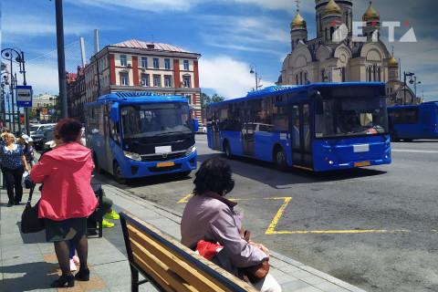 Автобус сбил пешехода во Владивостоке - возбуждено уголовное дело