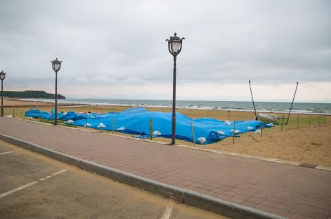 Константин Шестаков раскритиковал модернизацию пляжей Шаморы