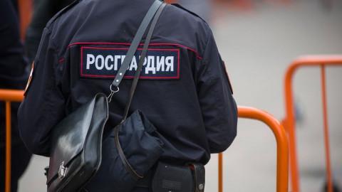 Кремль рассказал про казаков-росгвардейцев