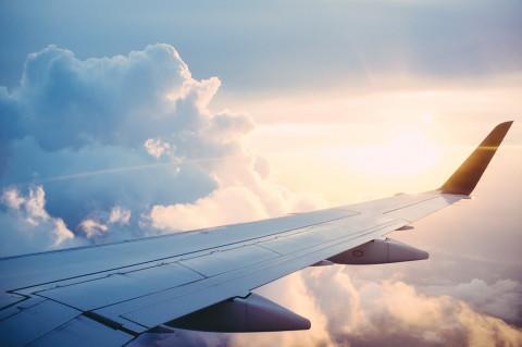 Непривитым от COVID-19 россиянам хотят запретить летать на самолётах