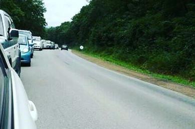 Жителям Приморья рассказали, как восстанавливают дороги после тайфунов