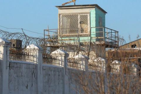 Сотовые в тюрьме отключит Госдума
