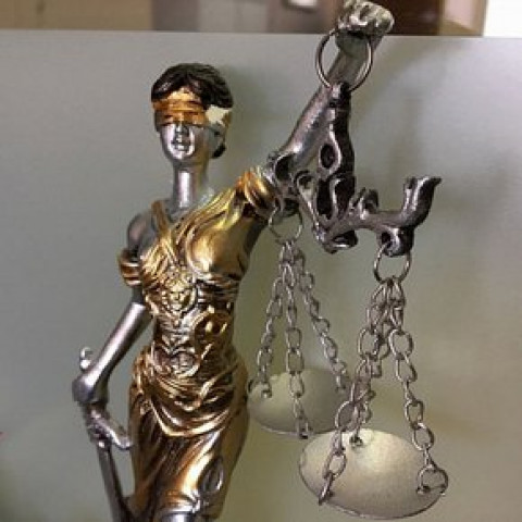 Мировых судей будут назначать на три года в Приморье