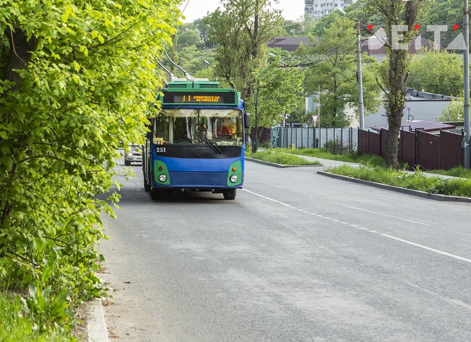 Почти 550 автобусов ежедневно дезинфицируют во Владивостоке