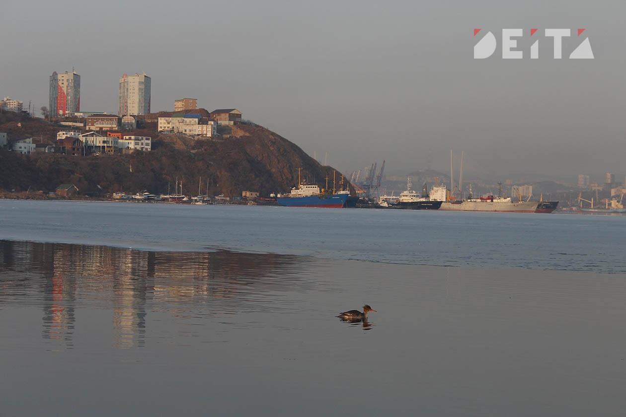Ветер, морось и туман: синоптики уточнили прогноз погоды
