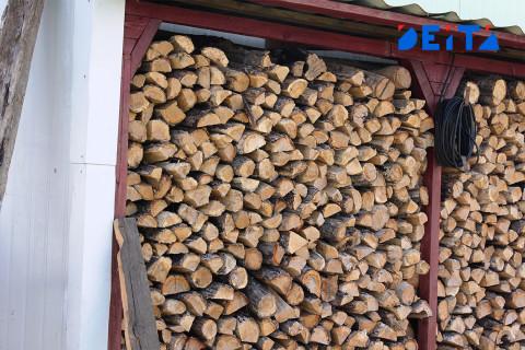 В Приморье судят ОПГ лесных контрабандистов