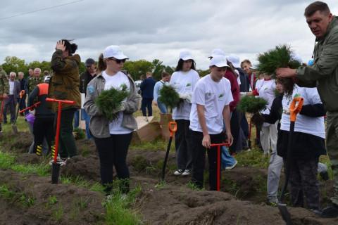 Всероссийская акция «Сохраним лес» стартовала в Приморье