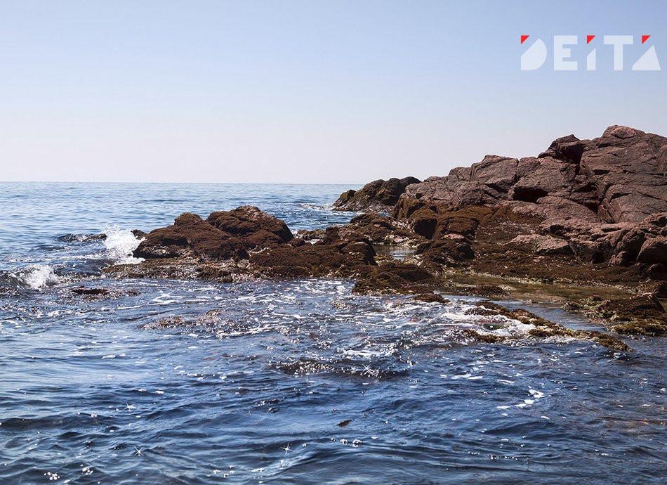 Тепло и влажно: погода не помешает отдыху на выходных в Приморье