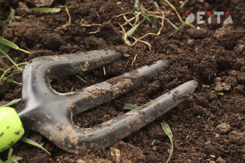 Дожди подтопили дороги и затопили огороды в Приморье