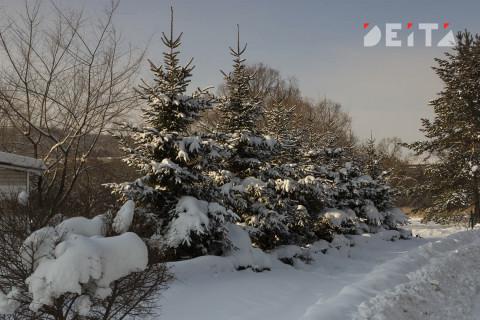 Снег и холод принесут приморцам выходные