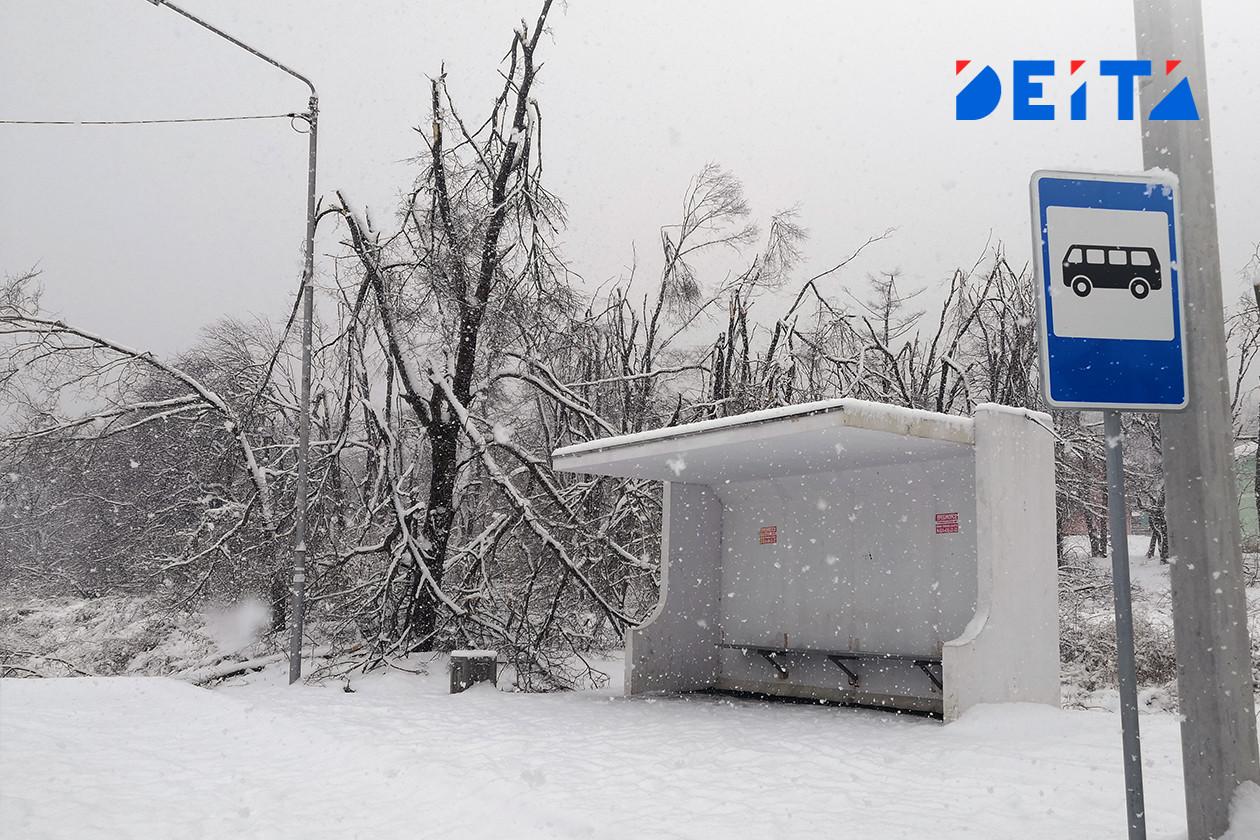 Ураган снёс автобусные остановки в Благовещенске