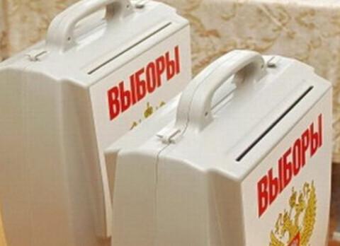 Центризбирком вычеркнул четырех человек из списка ЛДПР на выборы в Госдуму