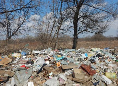 """""""Опасные отходы закапывают в землю"""": странное кладбище нашли в Приморье"""