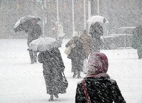 Снежный шторм накроет Приморье до обеда