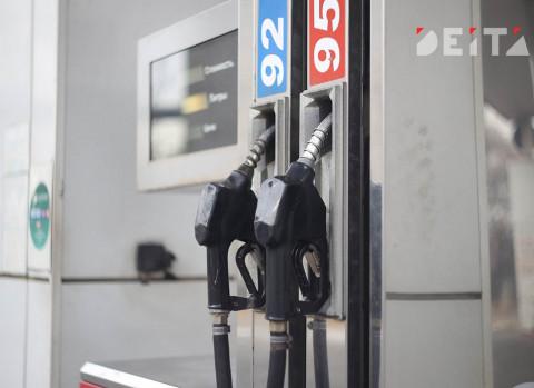 В России приостановился рост цен на бензин
