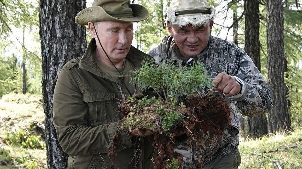 Песков: ищите Путина в Сибири