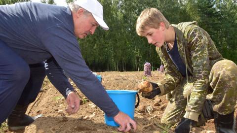 Лукашенко создает свою вакцину