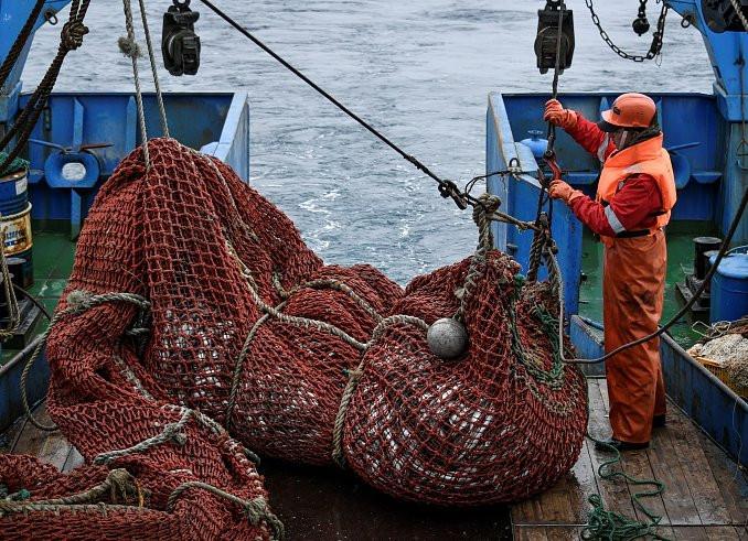 Красная рыба дорожает на Дальнем Востоке