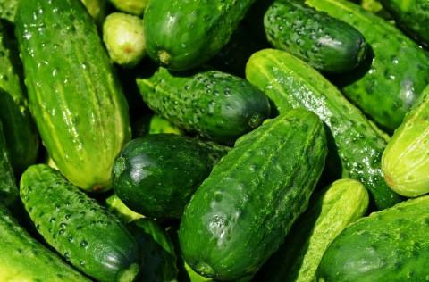 Китай не кормит: огурцы и помидоры подорожали в Приморье