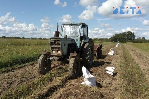 Смертельное ДТП с трактором произошло в Приморье