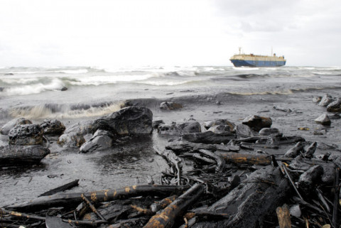 Экологическая катастрофа в Приморье: отходы химкомбината идут к морю