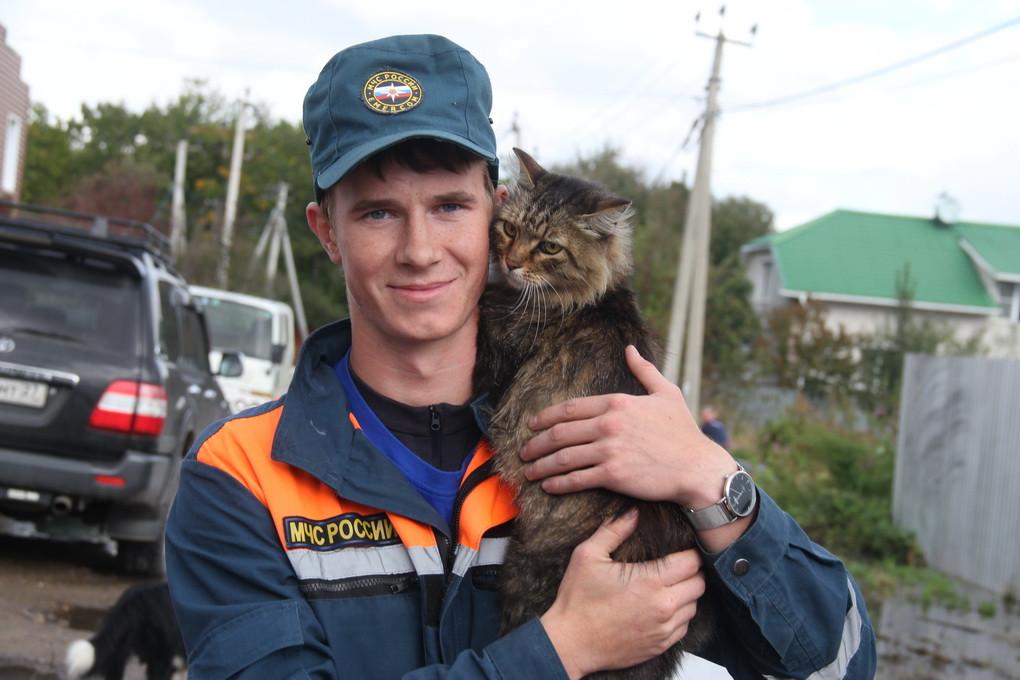 Мокрые, но живые: людей и котов спасают в затопленных районах Дальнего Востока