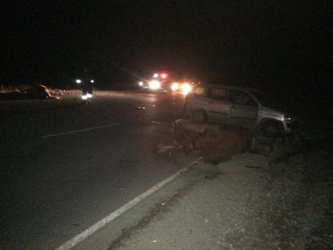 «Только добить»: массовая авария произошла в Приморье
