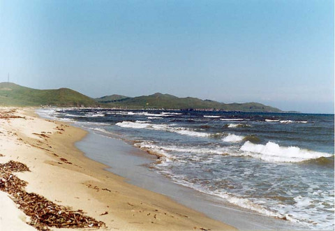 Недоступные берега: приморцев к морю не пускает коррупция