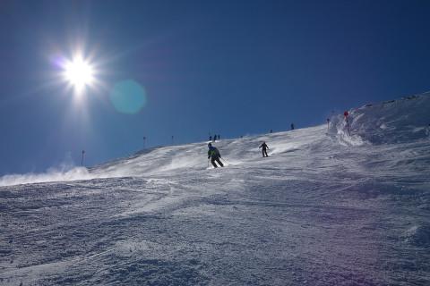 Десятки лыжников застряли в горах из-за дерева