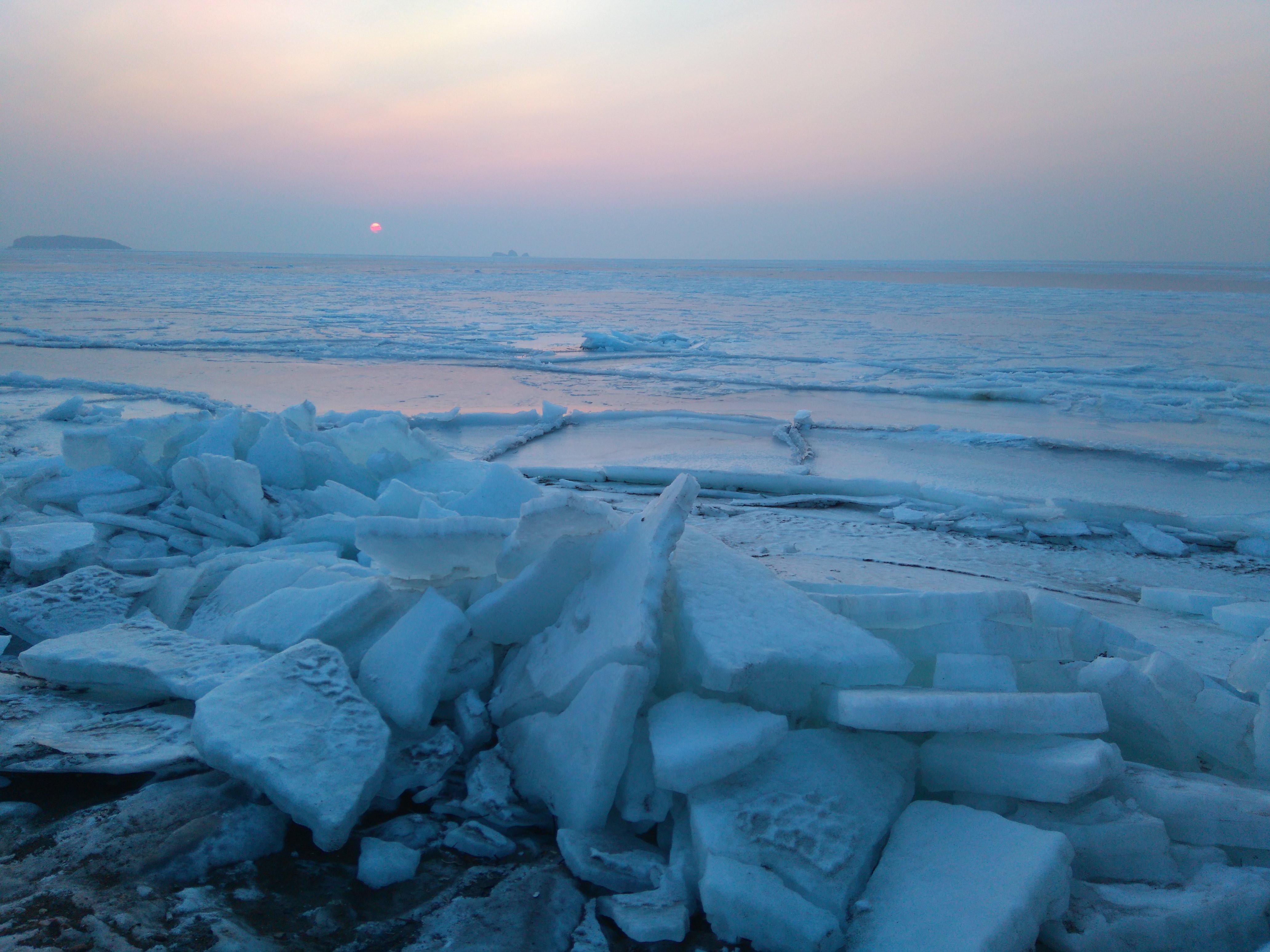 Жизнь под толстым слоем льда найдена в Антарктиде