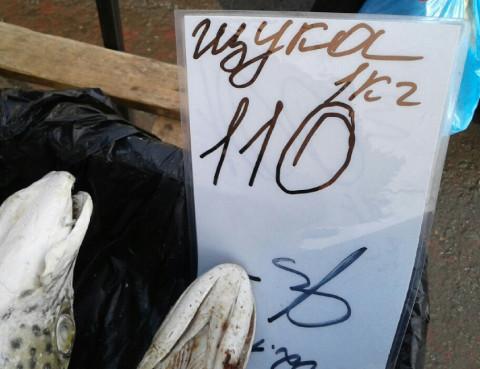 """Торговец рыбой """"попал"""" во Владивостоке"""