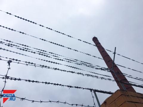 Вертухай на зоне зря вступил в говор с бродягами