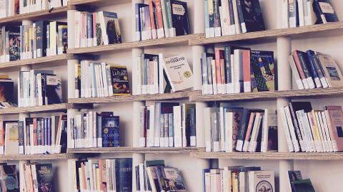 Модельные библиотеки создадут в России
