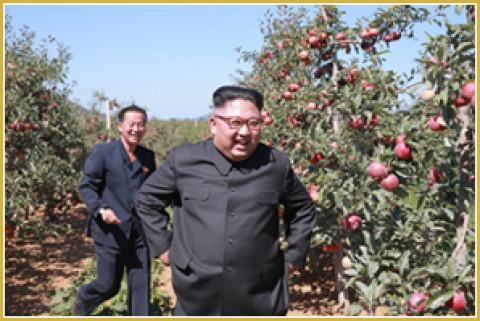 Ким Чен Ын встретил Трампа позитивчиком