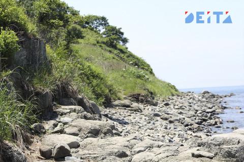 Стало известно, зачем в Приморье упраздняют природные территории