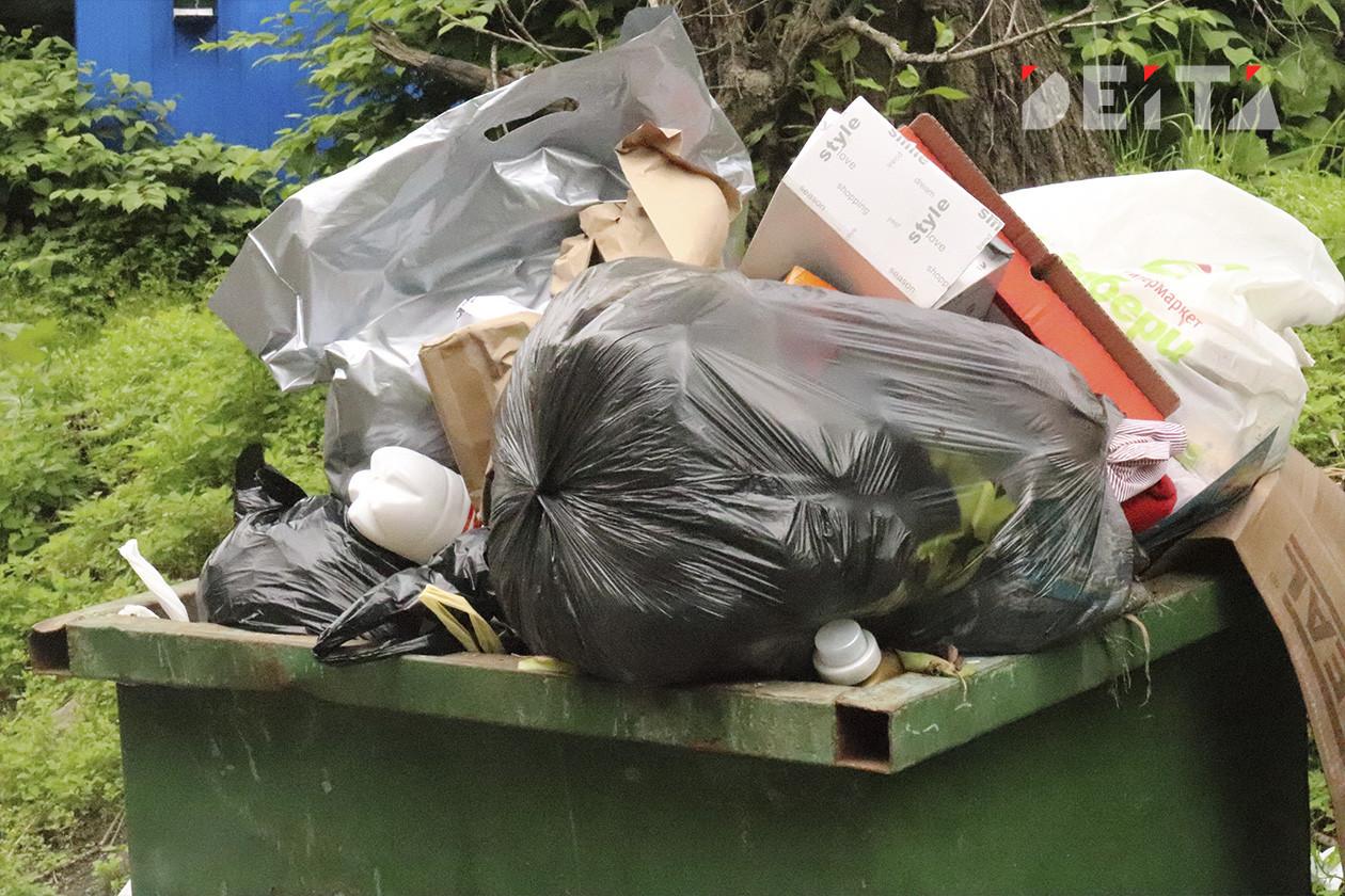 Штрафы до 250 тысяч за мусор ввели в Приморье