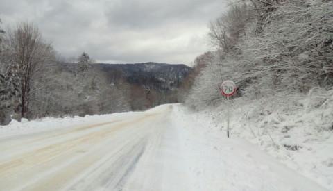 Снег заблокировал важные участки заповедника
