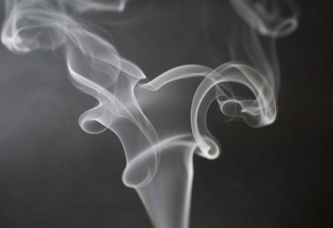 Где нельзя курить, рассказали полицейские