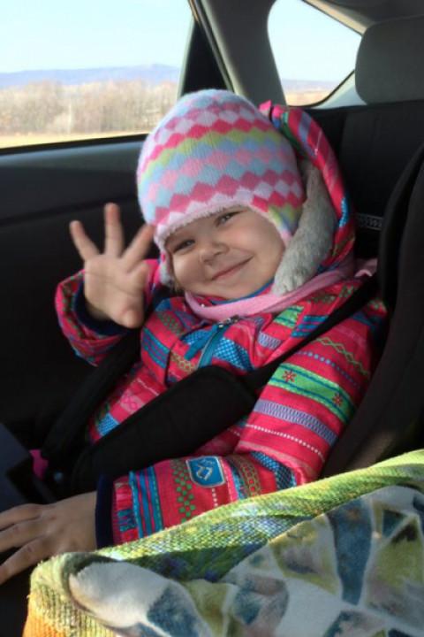 ГИБДД будет массово проверять водителей с детьми