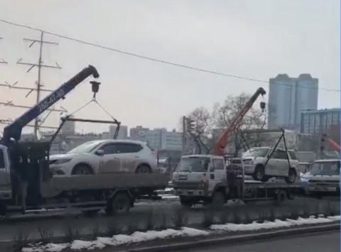 «Таскают по несколько штук»: эвакуаторы нашли «кормушку» во Владивостоке
