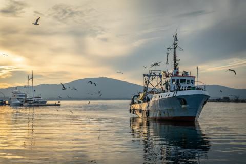 В Охотском море загорелась шхуна с десятками рыбаков