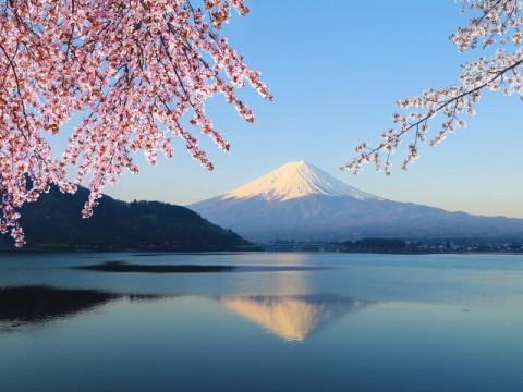 Жизнь Токио остановится через три часа после извержения Фудзиямы