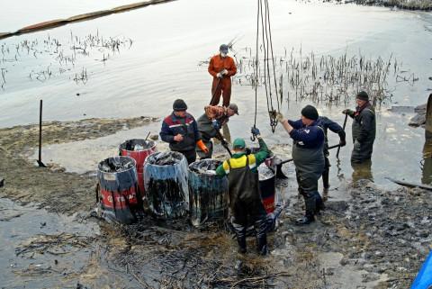 В Находке продолжают бороться с экологическим бедствием