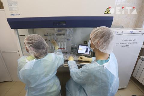 Всего 178: количество заражённых COVID-19 выросло в Приморье