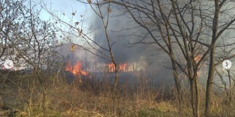 Дачный поселок в Приморье охвачен пламенем