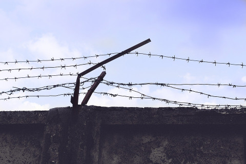 Американские заключенные стремятся заразиться коронавирусом