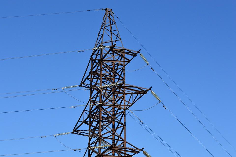 Почти 2000 птицезащитных устройств на ЛЭП установят хабаровские энергетики в 2020 году